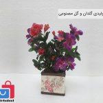 تولید و پخش منصوری