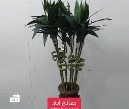 خرید عمده شاخه گل بامبو مصنوعی تزئینی