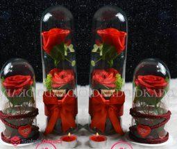 فروش عمده گل شیشه ای استوانه ای