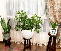 فروش عمده پایه گلدان ۴ پایه ام دی اف