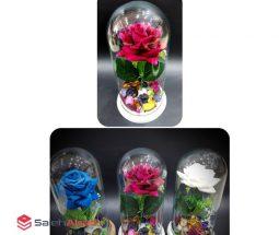 فروش عمده باکس شیشهای گل رز جاودان