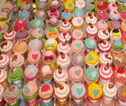 فروش عمده جا نقلی فانتزی مدل کاپ کیک