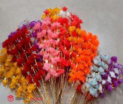 فروش عمده گل های شاخه ای تزیینی